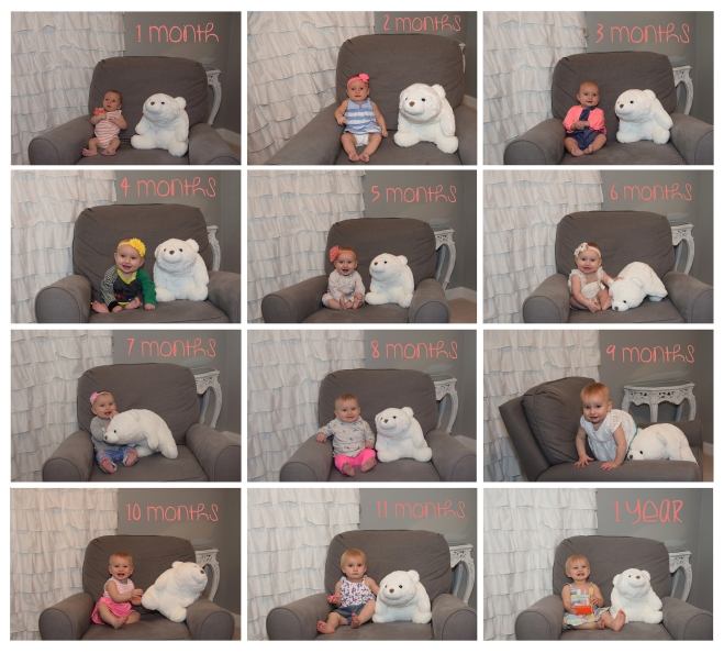 Baby Girl 1st Year Monthly Photo Collage