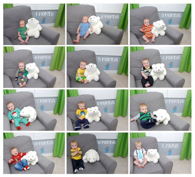 Baby 1st Year Monthly Photo Collage with Stuffed Animal