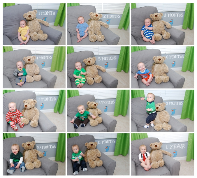 Baby 1st Year Monthly Photo Collage