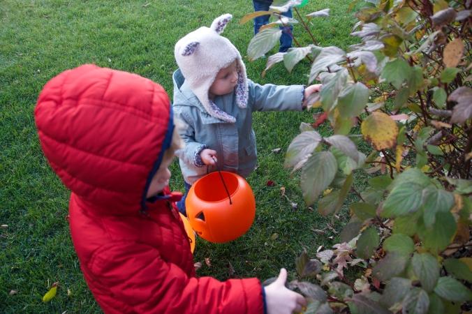 Fall Leaf Lantern - projectsinparenting.com
