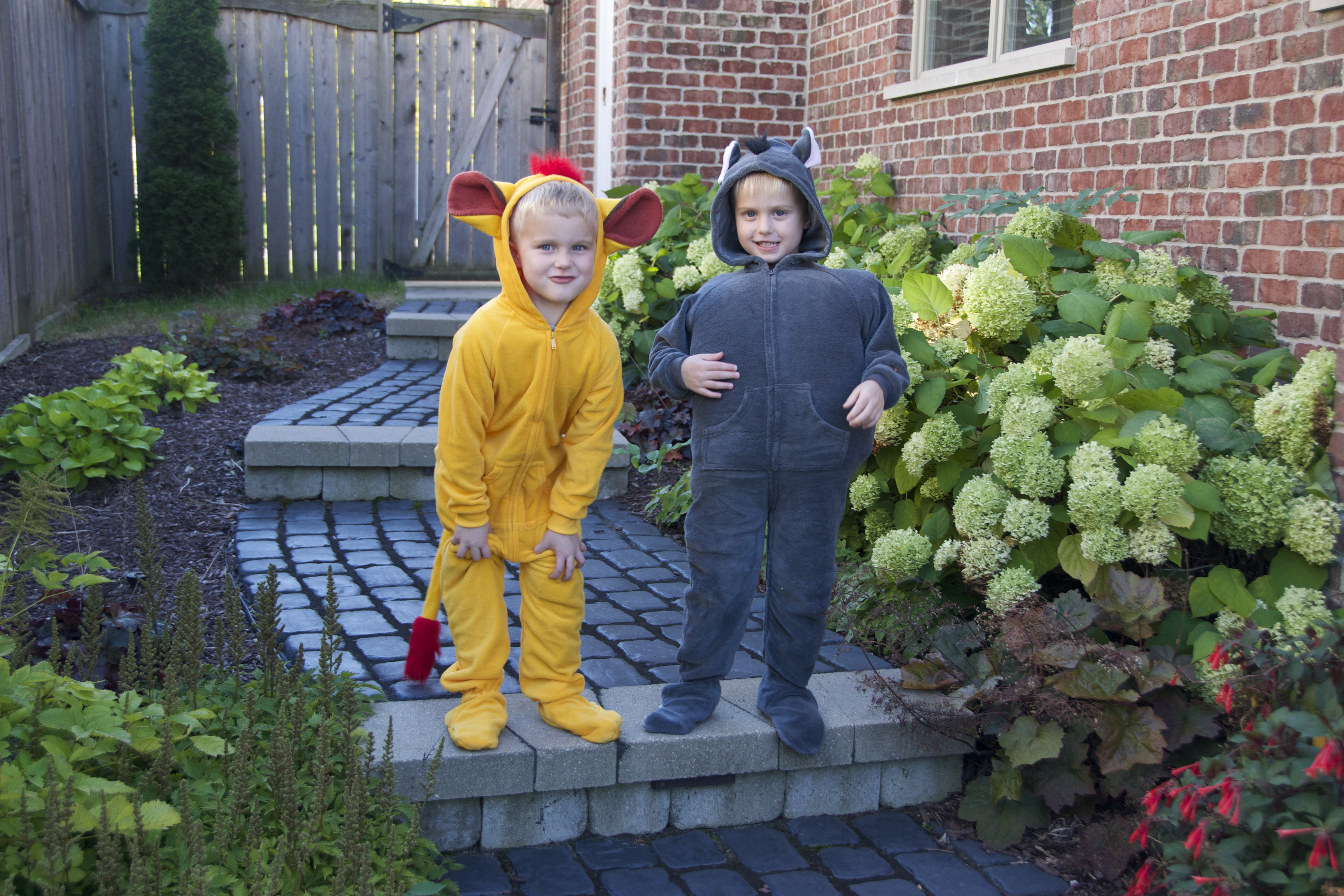 Diy Lion Guard Costumes Projects In Parenting