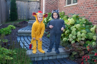 diy-kion-and-beshte-costumes
