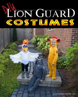 diy-lion-guard-costumes-projectsinparenting-com