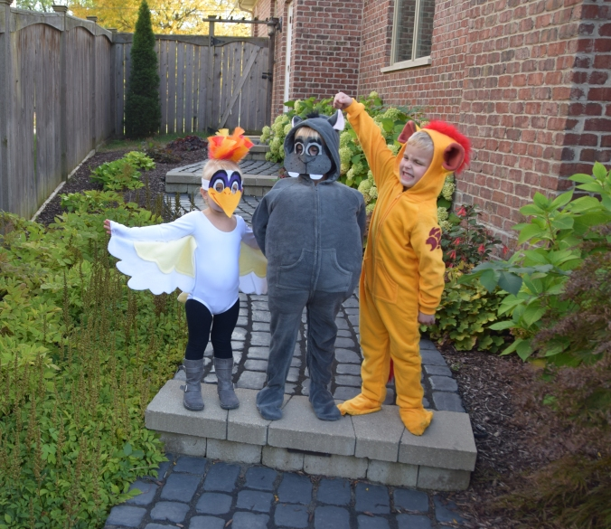 diy-lion-guard-costumes